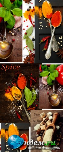 Кулинарные фоны с зеленью и специями / Culinary backgrounds with greens and spices