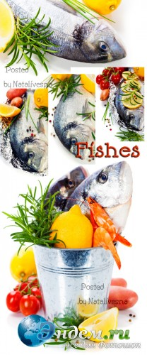 Рыба с лимоном / Fish with a lemon - Stock photo