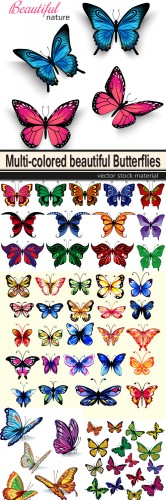 Multi-colored beautiful Butterflies