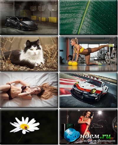 LIFEstyle News MiXture Images. Wallpapers Part (1229)