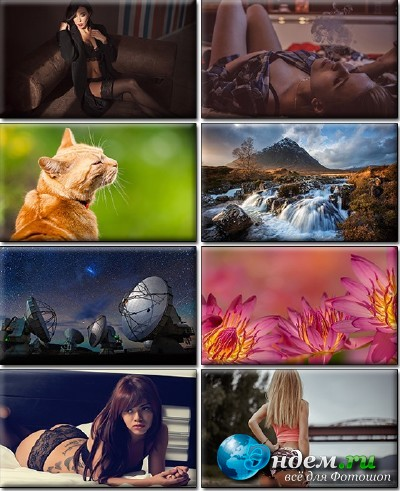 LIFEstyle News MiXture Images. Wallpapers Part (1320)