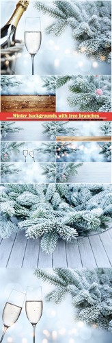 Winter backgrounds with tree branches