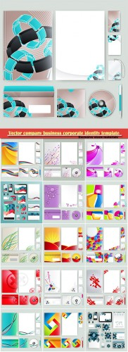 Vector company business corporate identity template with color elements
